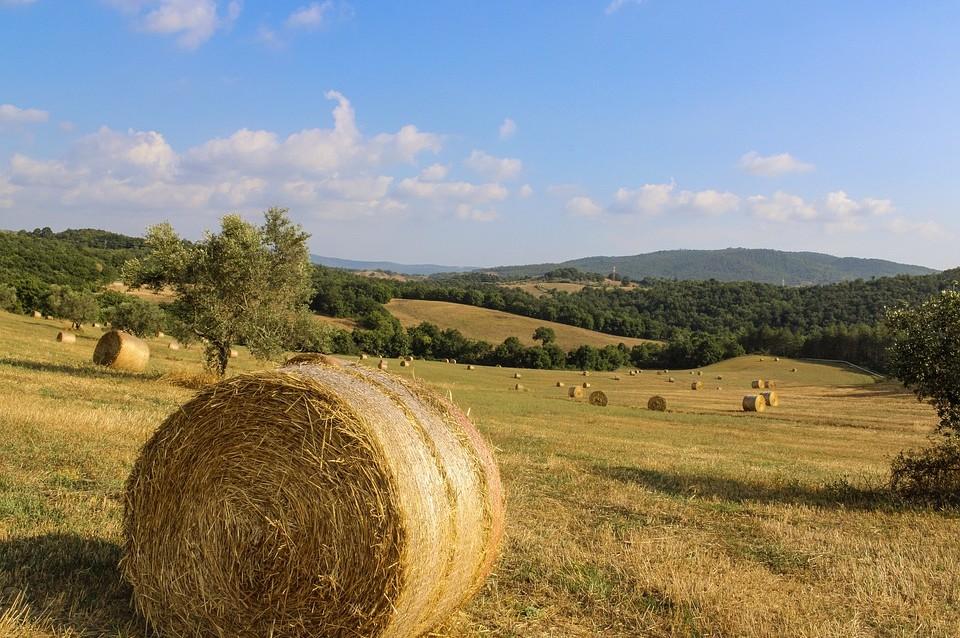 Op vakantie naar regio Toscane