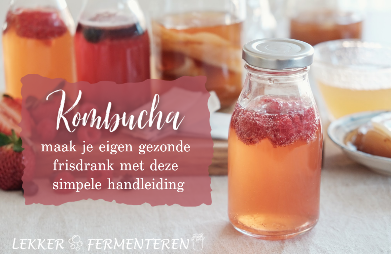 kombucha-recept