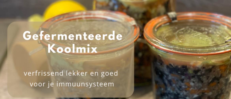 Gefermenteerde koolmix, met wortel, gember en knoflook.