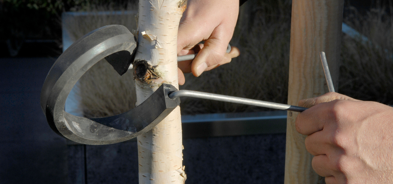 Stap 1: leiboom vastzetten met een boombeugel