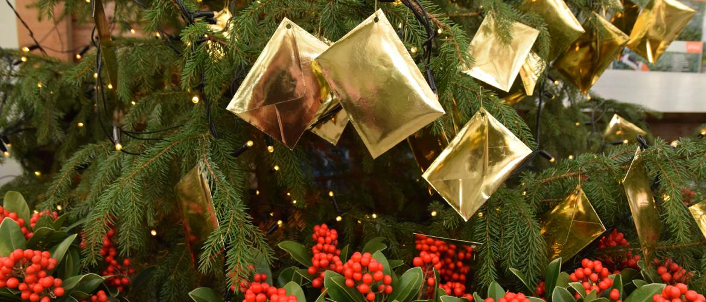 Kerstboom kopen? Win prijzen uit de cadeauboom!