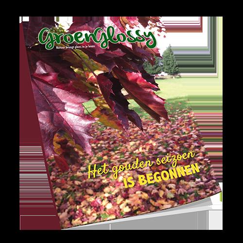 Download gratis GroenGlossy Herfst