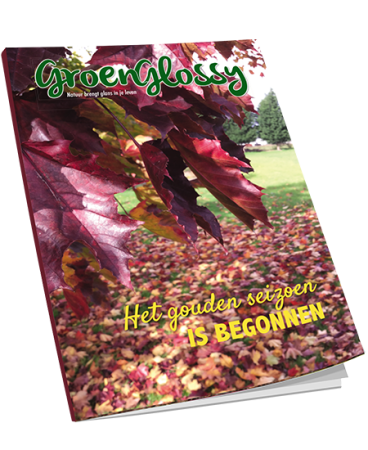 Download gratis E-book GroenGlossy najaar