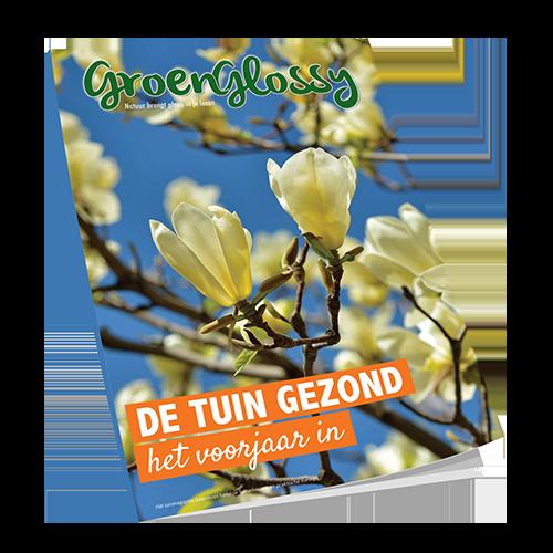 Download gratis GroenGlossy voorjaar