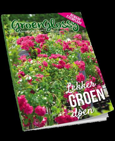 Download gratis E-book GroenGlossy zomer