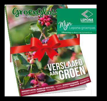 Geef de GroenGlossy cadeau