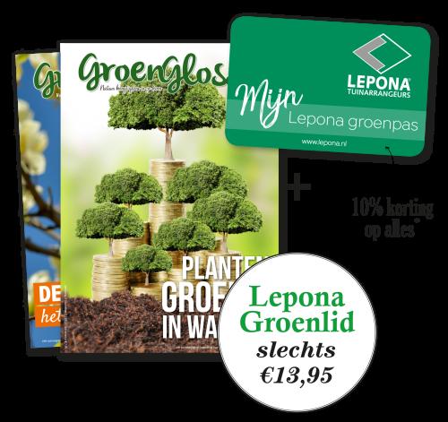 Wordt voordelig Groenlid bij Lepona