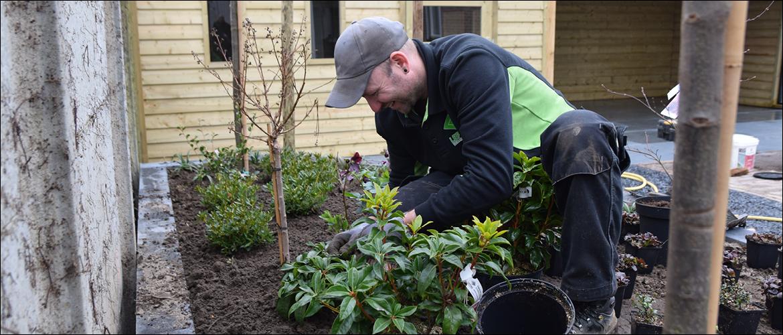 Hoe zorg je goed voor je planten?