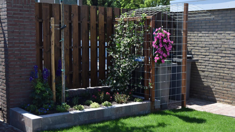 Leid de klimplant op de juiste manier tegen het hekwerk