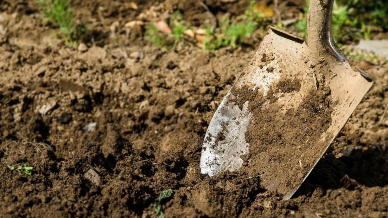 Maak een ruim plantgat voor het planten van klimplanten