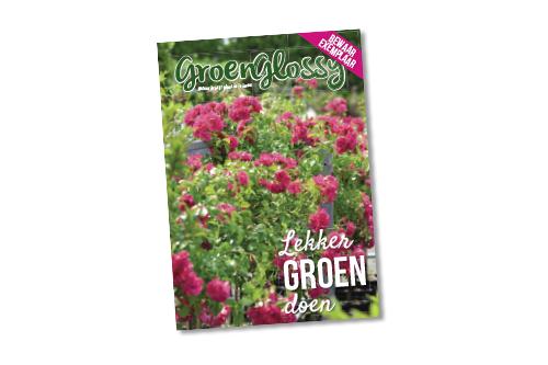 De GroenGlossy Zomer