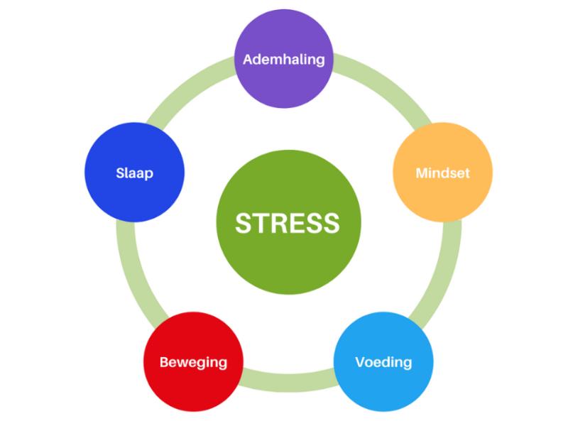 Stress schijf van vijf