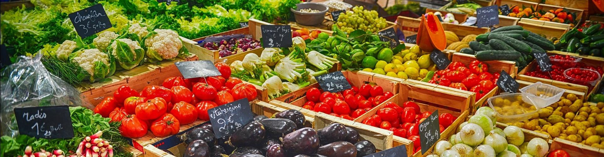 vitamine-mineralen-tekort-testen-vegatest
