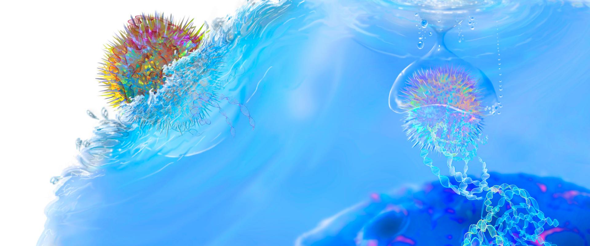 COVID19 BLOG #1: Het belang van ons immuunsysteem