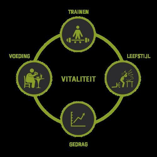 De livept academy is de online community voor vitaliteit. We organiseren webinars, workshops, worksouts online en offline  en schrijven artikelen over vitaliteit.
