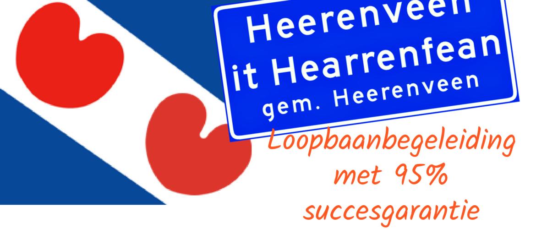 Wat is goede loopbaanbegeleiding in Friesland?