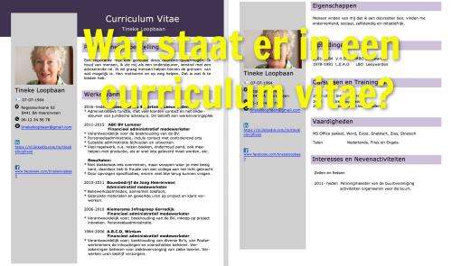 wat-staat-er-in-een-curriculum-vitae