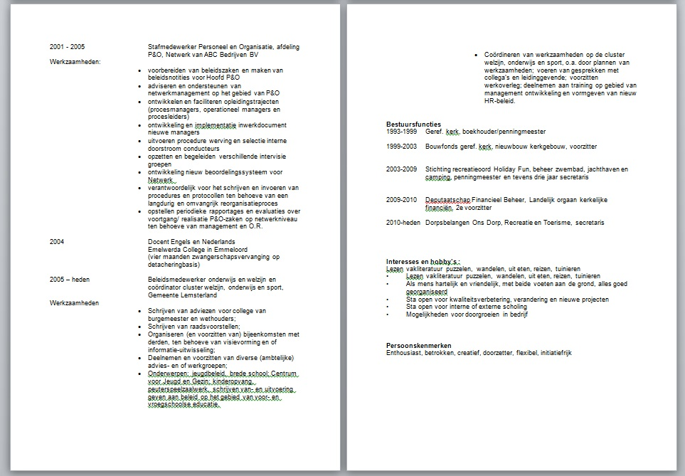 Je curriculum vitae / can you write my essay