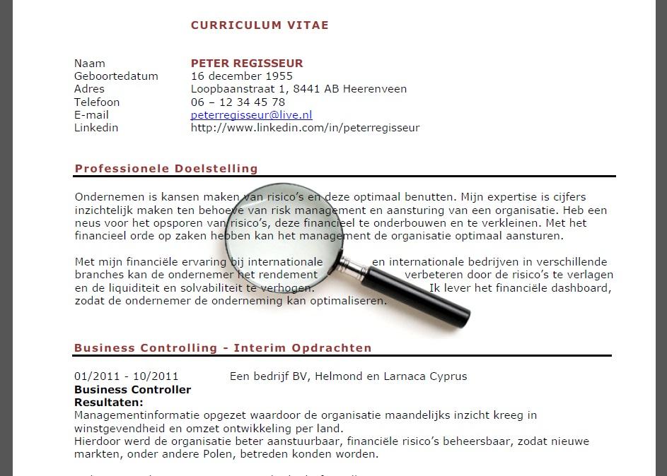 Curriculum Vitae: Curriculum Vitae Voorbeeld