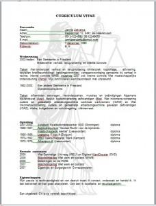 Curriculum Vitae deel 6