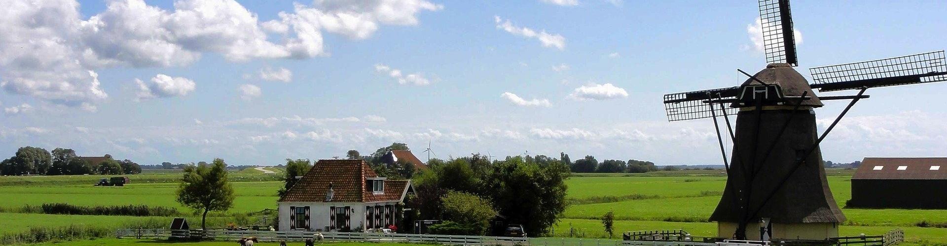Low Code Nederland