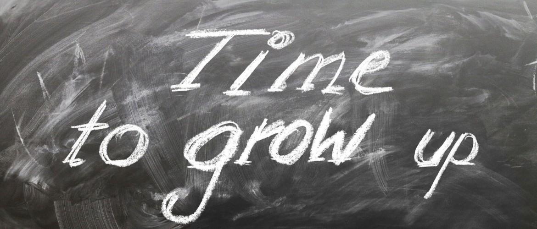 De 9 belangrijkste basiselementen om een (kleine) onderneming te laten groeien