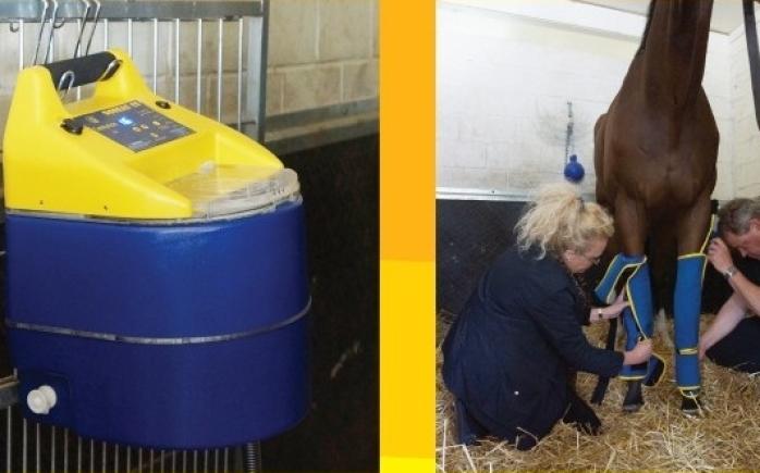 boreas koeling voor paarden