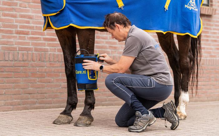 minipulse om paardenbeen voor behandeling van blessure