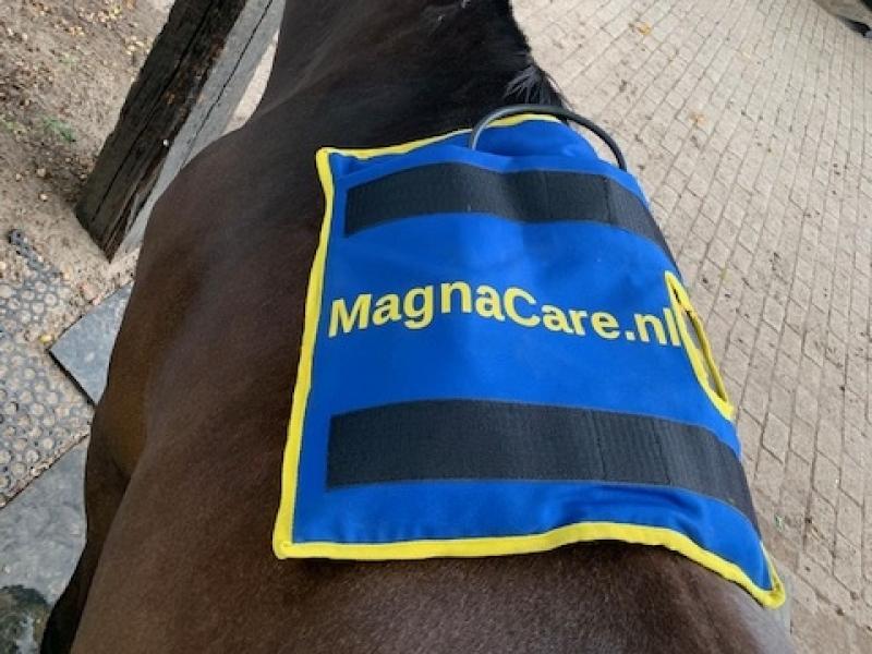 minipulse magneetveldtherapie kan ook op de rug gebruik worden