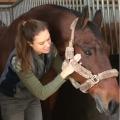 paula-de-bruin gebruikt magneetveldtherapie in haar werk