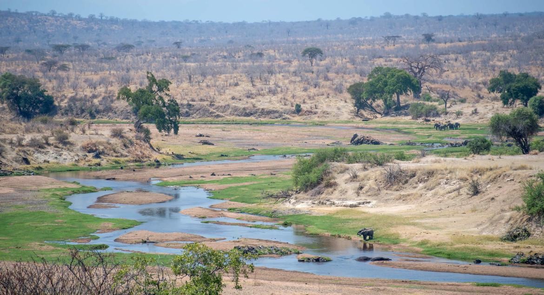 The Southern Circuit in Tanzania