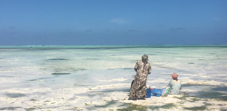 Travel Experience Tanzania Zanzibar