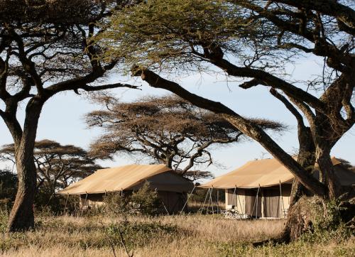 Tanzania Safari and Zanzibar holiday