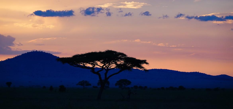 What is a Sundowner on safari?