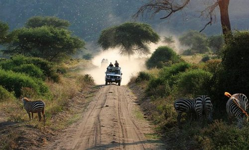 Safari Tanzania best places