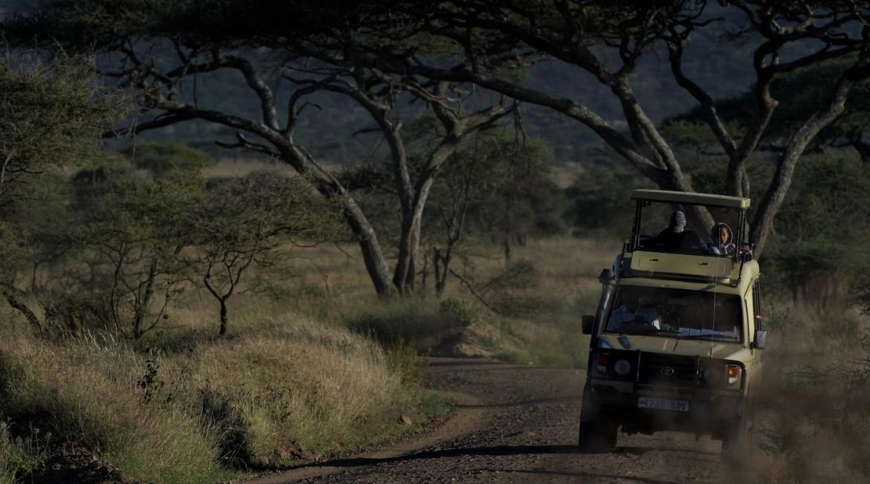 Kosten Safari afhankelijk van het aantal personen in de jeep