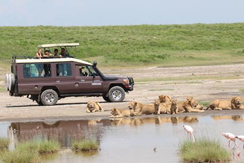 Makasa Safaris Afrika Tanzania