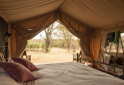 Safari Tanzania Serengeti Migratie Glamping