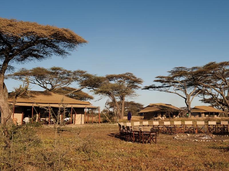 Safari Tanzania Serengeti Glamping