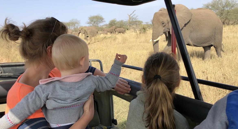 Reis op maat Tanzania in een privé jeep