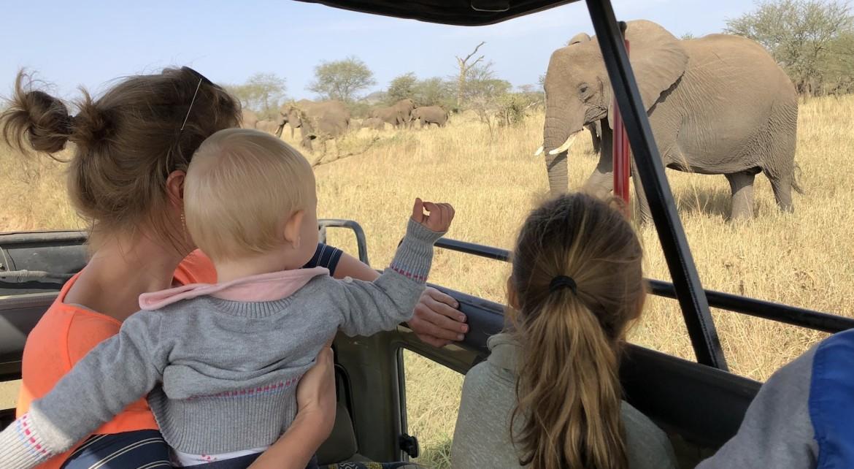 Safari vanuit Zanzibar Serengeti