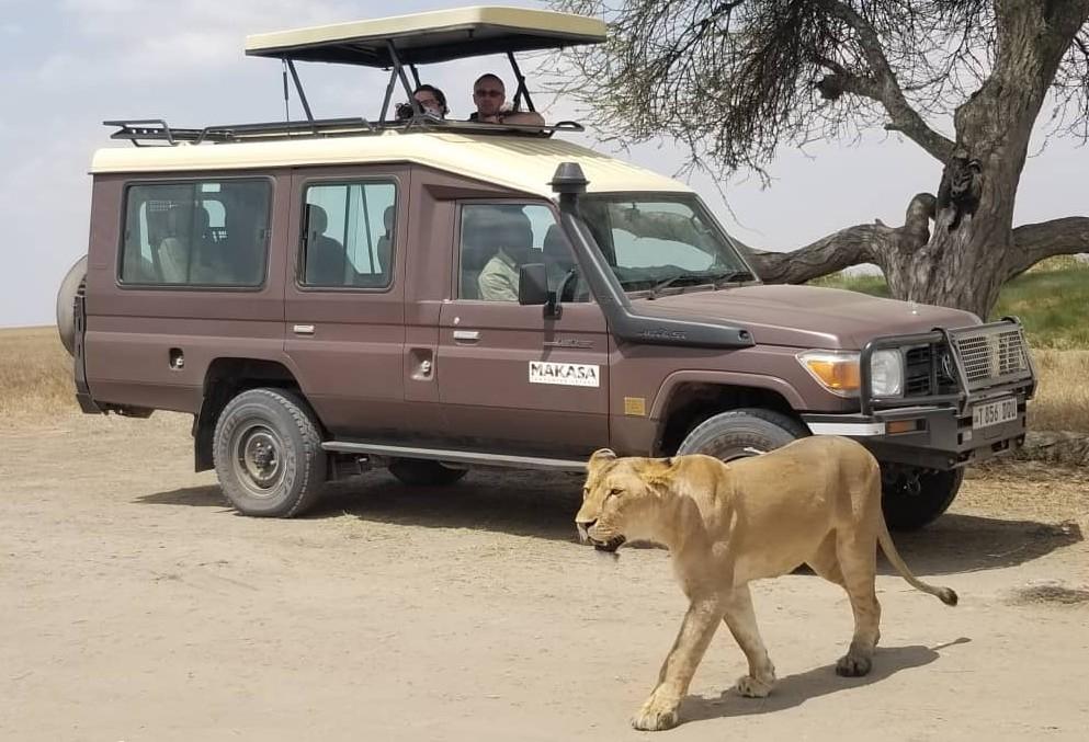Op safari vanuit Zanzibar