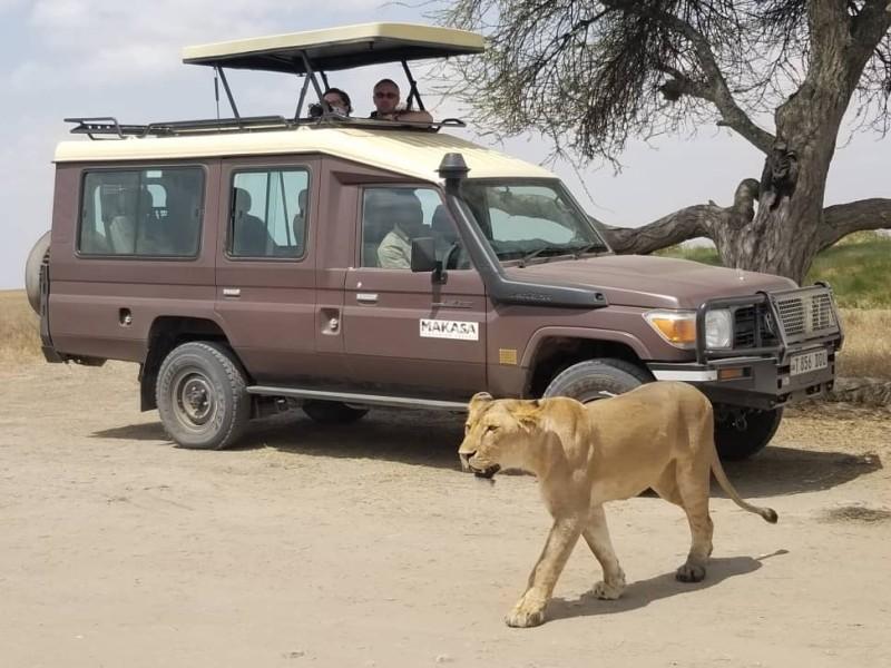 Safari Zanzibar Vakantie Makasa Jeep