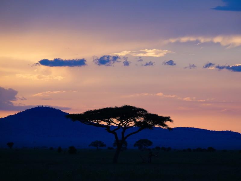 Tanzania Stammen en Safari rondreis