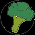 babyhapje broccoli