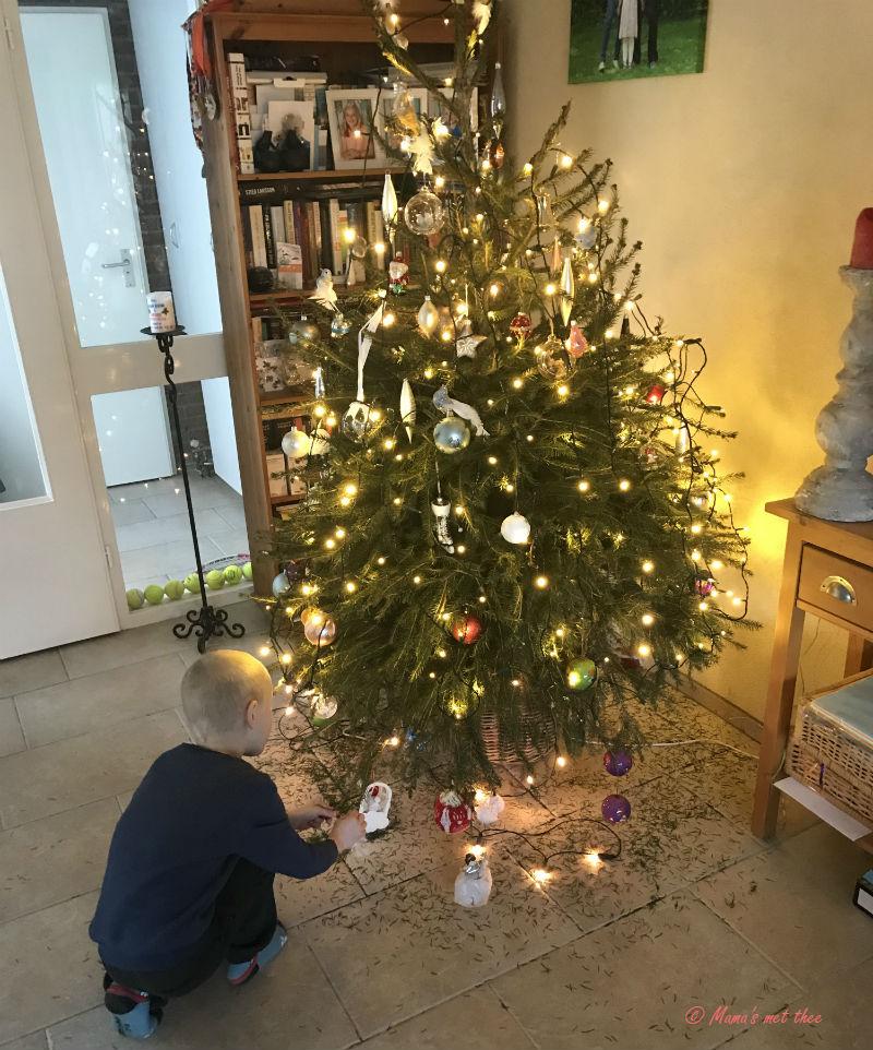 Wanneer Gaat De Kerstboom Eruit