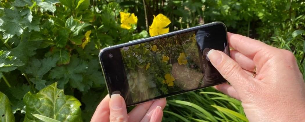 Eindelijke de keuze gemaakt voor een nieuwe Iphone