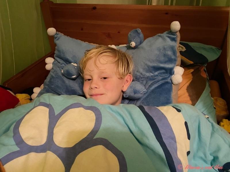 Slapen op een kussen van blauwe beren van Nestle