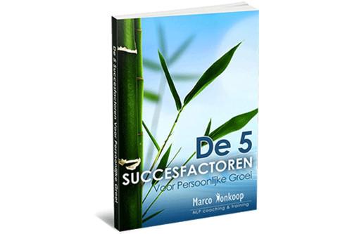 5 succesfactoren nlp