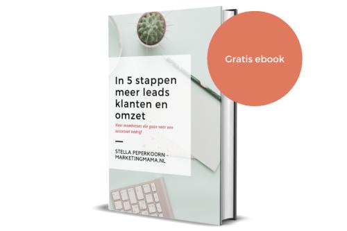 Gratis ebook in 5 stappen meer leads klanten en omzet